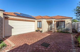 Picture of 219B Huntriss Road, Doubleview WA 6018