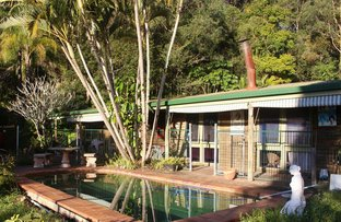 Picture of 25 Seib Road, Eumundi QLD 4562