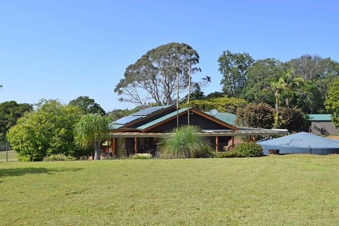 Picture of 23 Callistemon Dr, FEDERAL NSW 2480