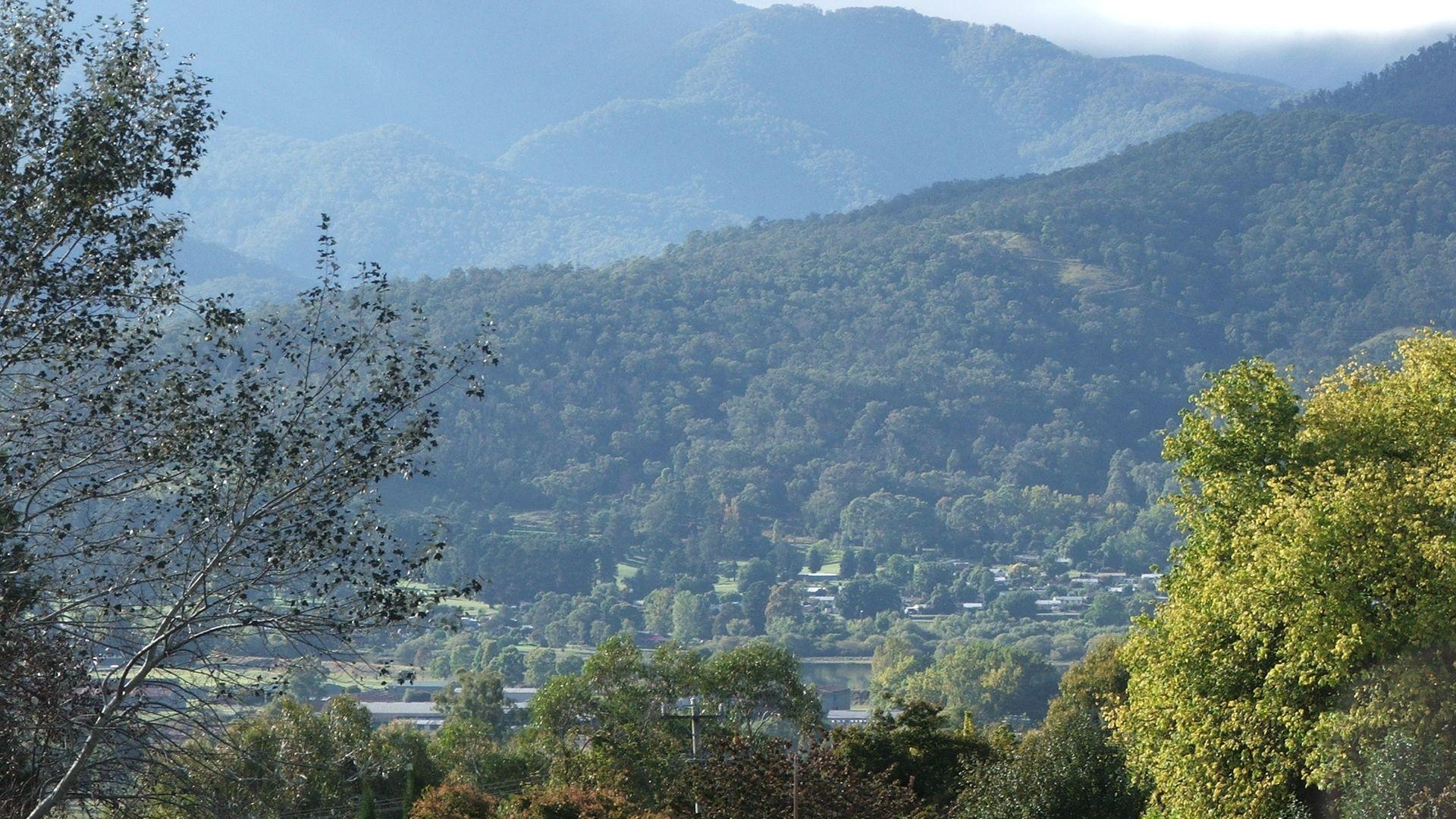Fiddleback Drive, Tawonga South VIC 3698, Image 1