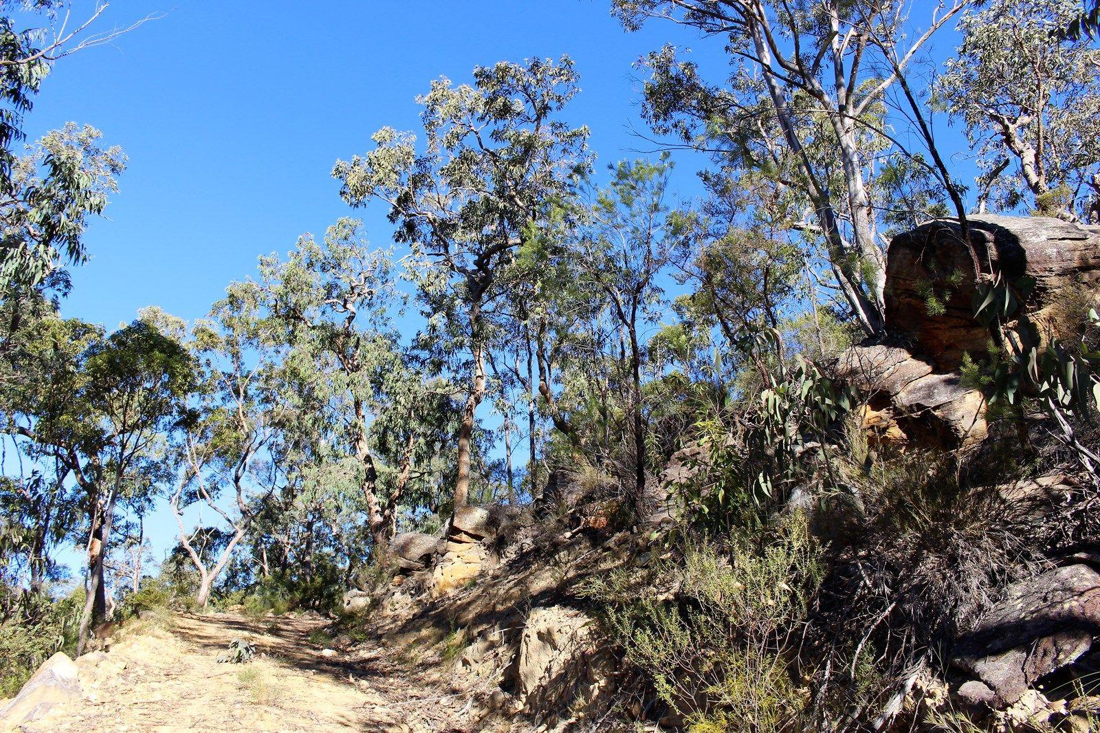 Lot 157 Knights Road, Laguna NSW 2325, Image 2