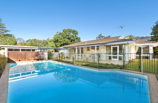 Picture of 4 Aronia Avenue, St Ives NSW 2075