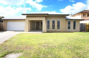 19 Denise Drive, Upper Coomera QLD 4209