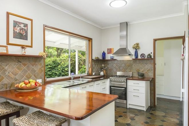 Picture of 203 Duck Creek Mountain Road, ALSTONVILLE NSW 2477