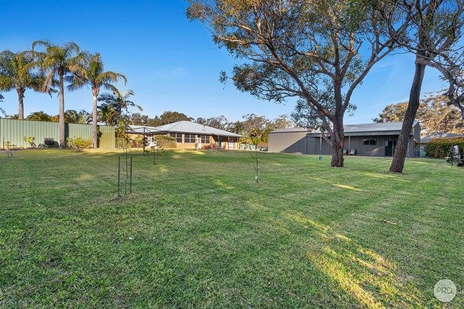 Picture of 4 Casuarina Close, ONE MILE NSW 2316