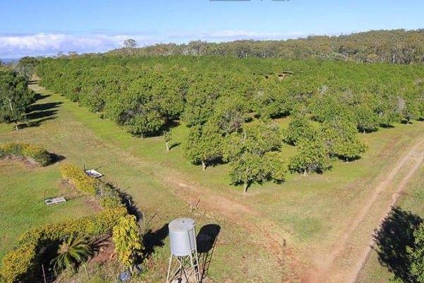 234 Heinemann Rd, Redland Bay QLD 4165, Image 2