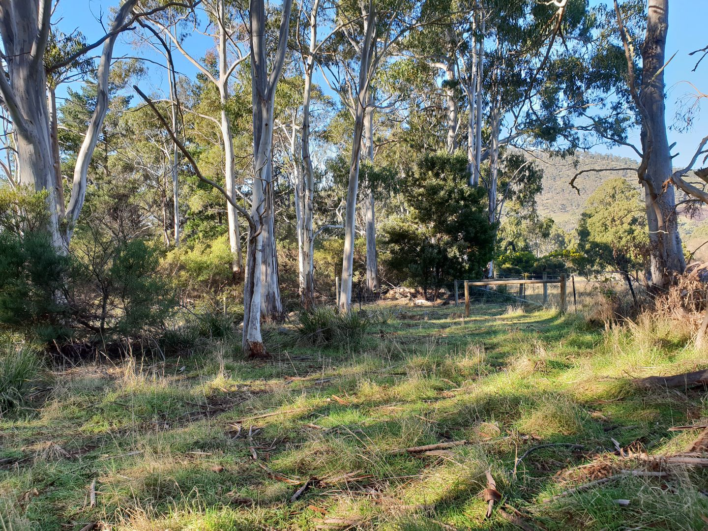 Lot 4 Evans Road, Port Huon TAS 7116, Image 2
