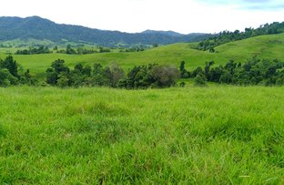 Picture of Mena Creek QLD 4871