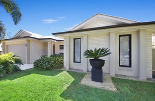 Picture of 10 Paynters Pocket Avenue, Palmwoods QLD 4555