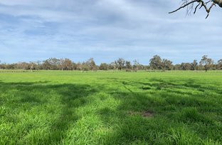Picture of 16184 South Western Highway, North Boyanup WA 6237