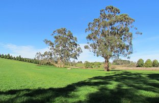 Picture of LOT 1 ON TP379503, RHODES ROAD, Darnum VIC 3822