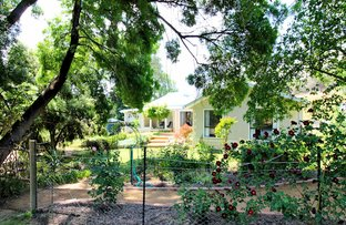 Picture of 181 Morgans Rserve Road, Tumut NSW 2720