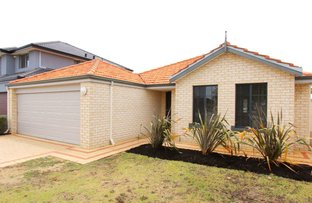 Picture of 13 Caterpillar Road, Success WA 6164