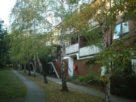3/19 Auburn Grove, Hawthorn East VIC 3123, Image 0