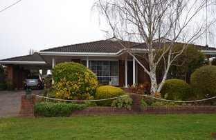 Picture of 276 Rippon Road, Hamilton VIC 3300