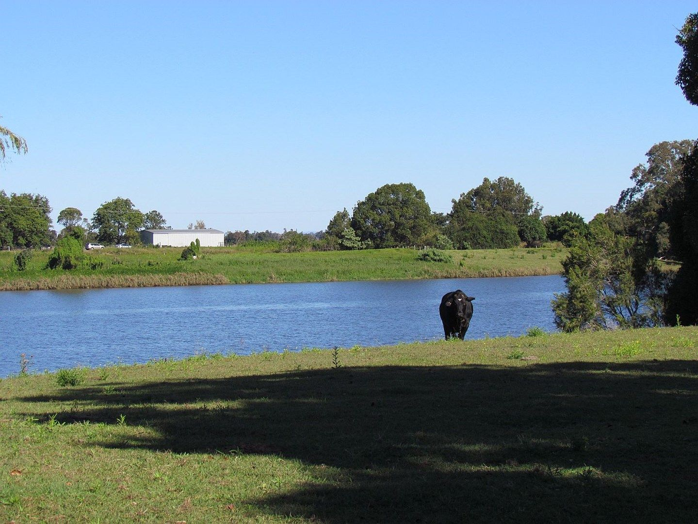 805 South Arm School Road, Brushgrove NSW 2460, Image 0