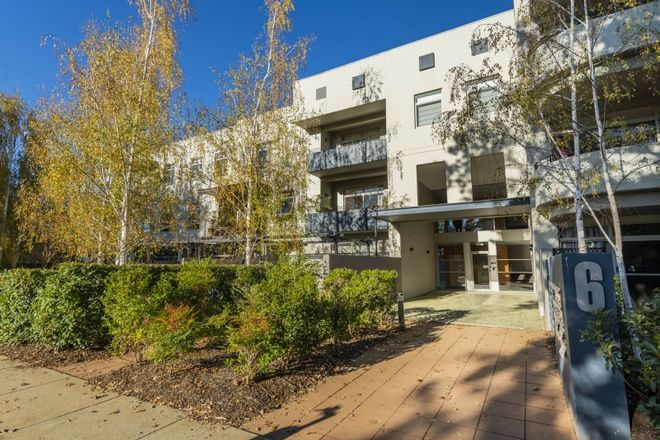 Picture of 13/6 MacLeay Street, TURNER ACT 2612