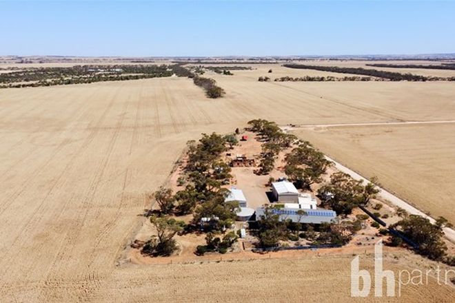 Picture of 23 Punthari Road, ANGAS VALLEY SA 5238