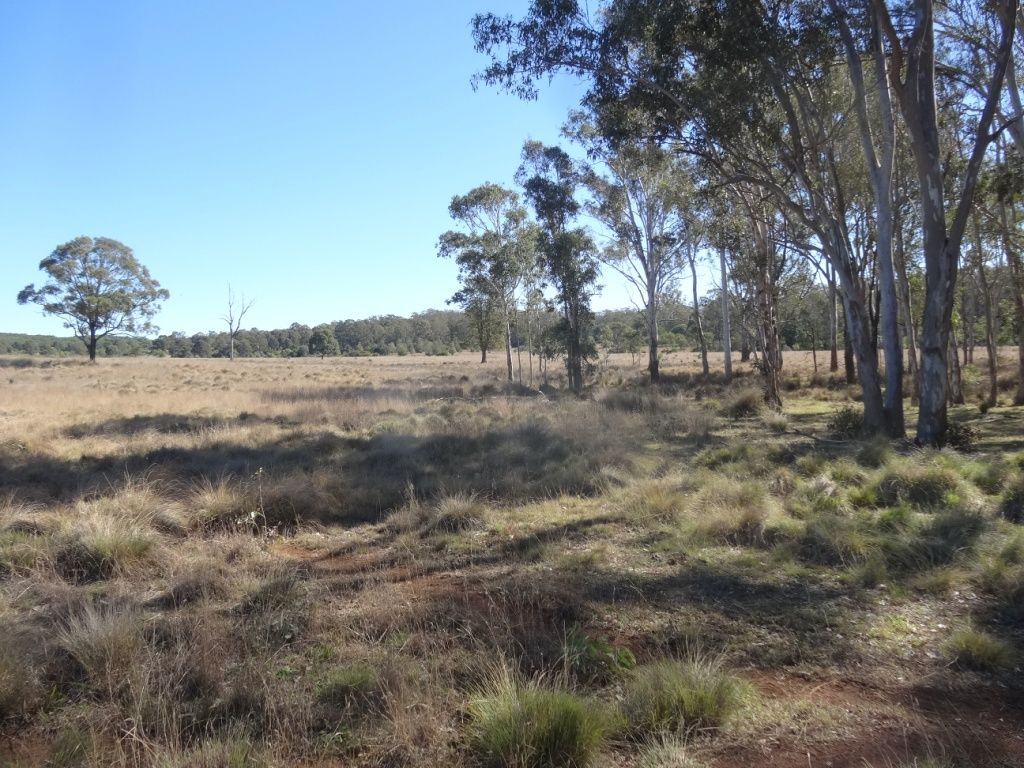 Lot 99 Coolabunia Malar rd, Kingaroy QLD 4610, Image 1