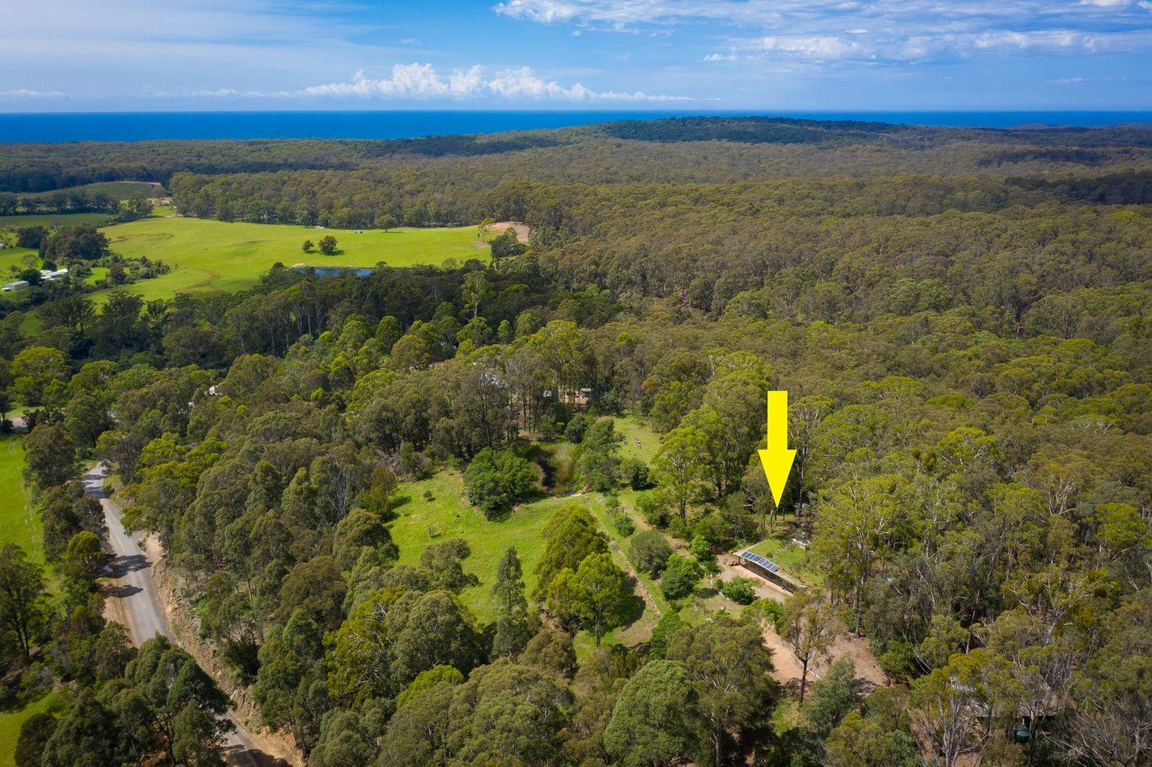 51 Doctor George Mountain Road, Tanja NSW 2550, Image 0