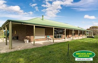 Picture of 317 Nine Mile Road, Ashville SA 5259