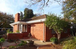 Picture of 23 Park Avenue, Rosslyn Park SA 5072