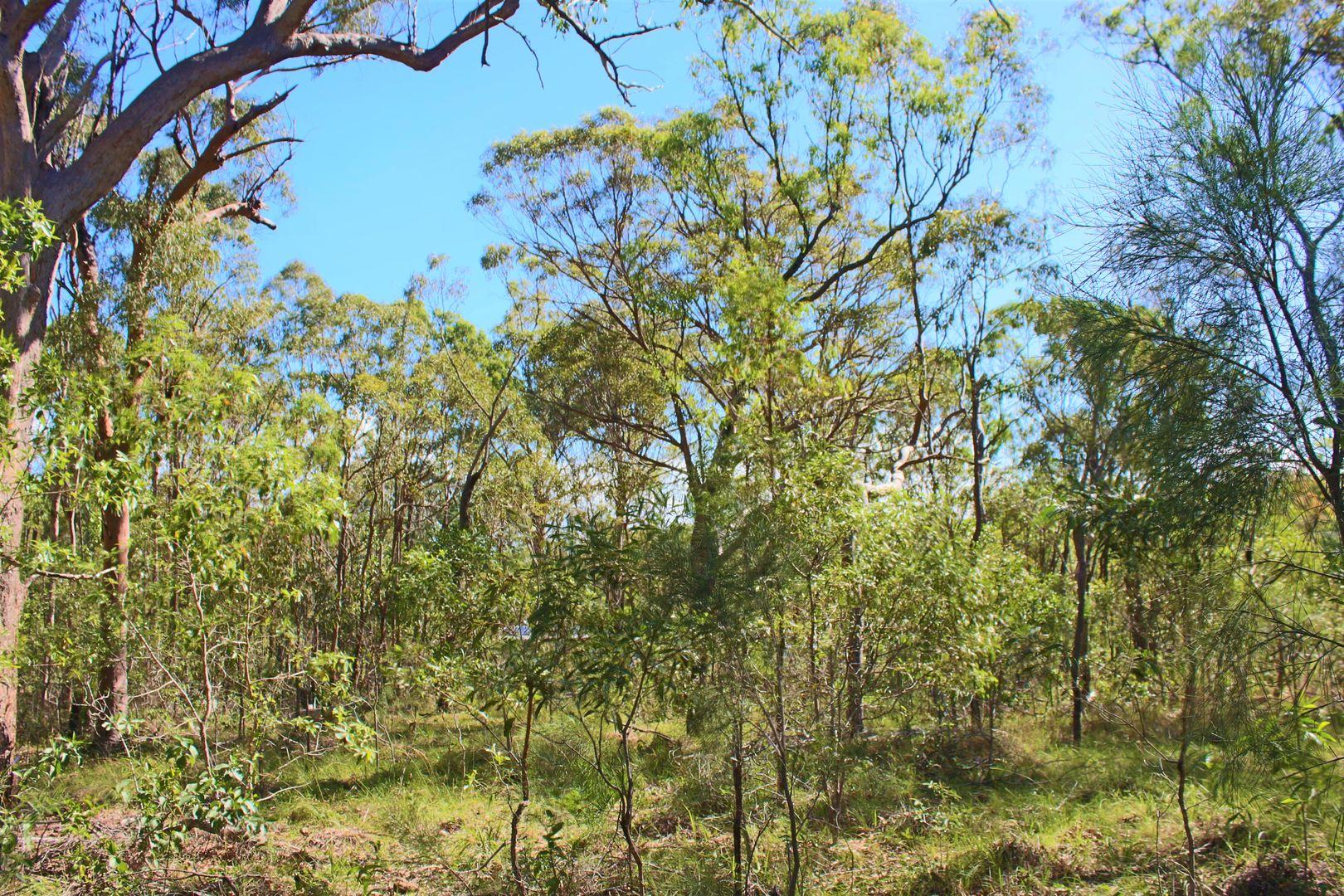 Bills Road, Agnes Water QLD 4677, Image 2
