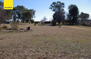 Picture of 1235 Nullamanna Road, Inverell NSW 2360