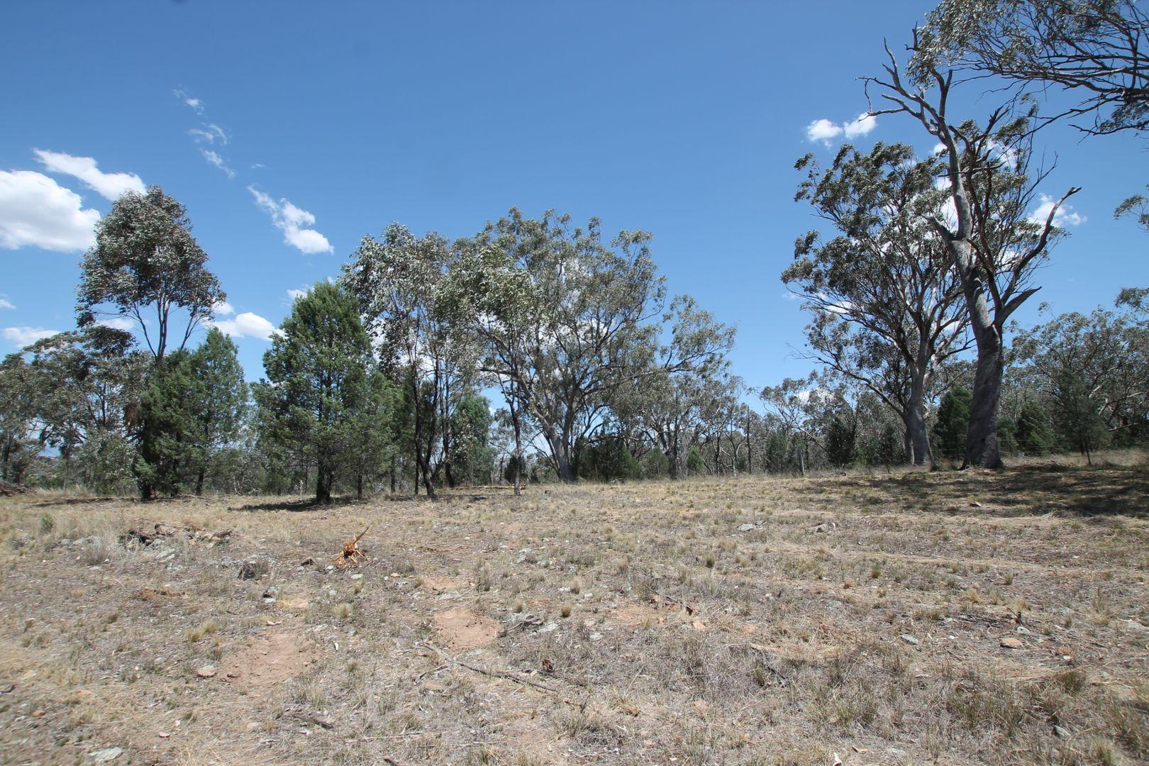 6 Greentrees Drive, Quirindi NSW 2343, Image 1