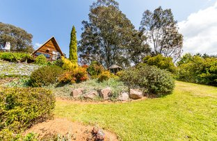 Picture of 17 Sullivan Street, Towong VIC 3707