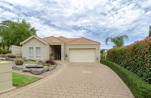 Picture of 10 Bluebell Court, Craigburn Farm SA 5051