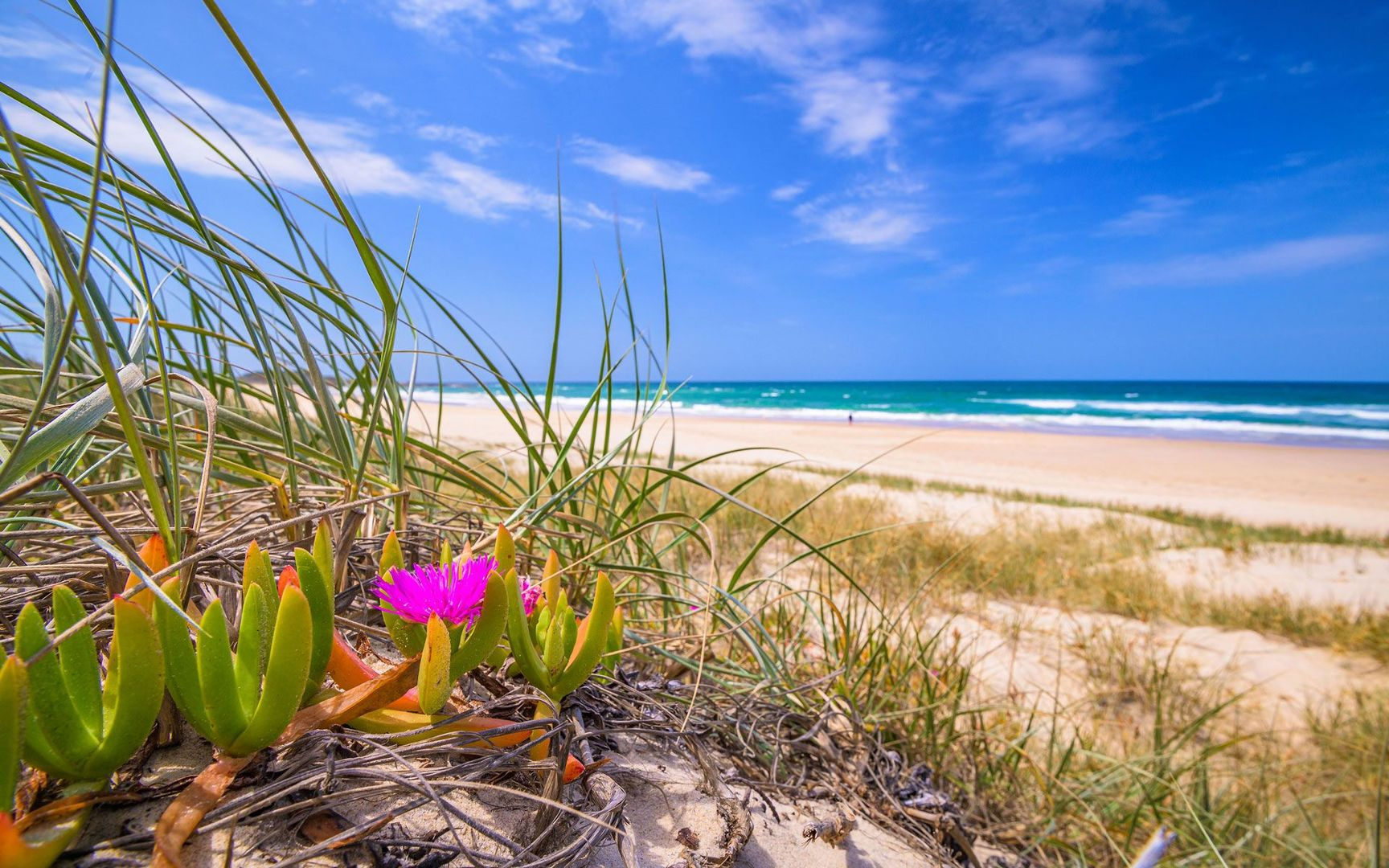 Lot 8 The Dunes Esta River Street, Yamba NSW 2464, Image 1