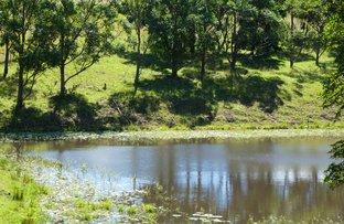 Picture of 1190 Hogarth Range Road, Hogarth Range NSW 2469