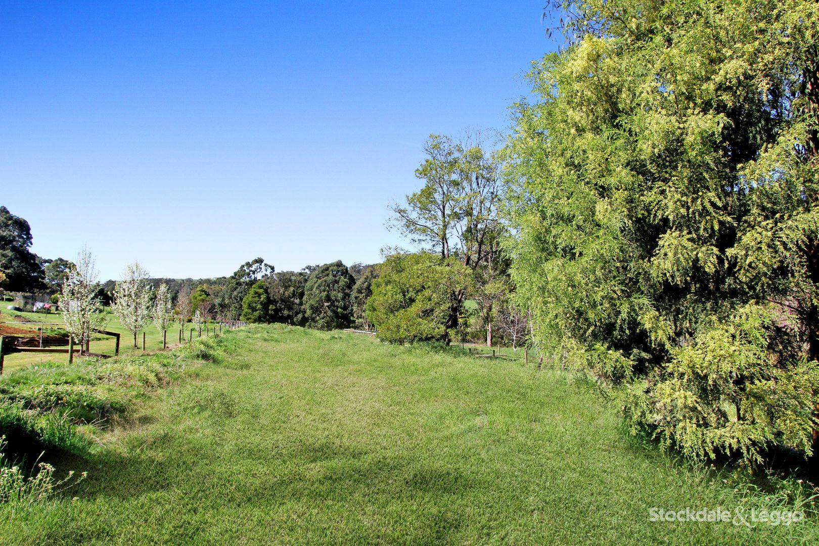 18 Old Thorpdale Road, Mirboo North VIC 3871, Image 1