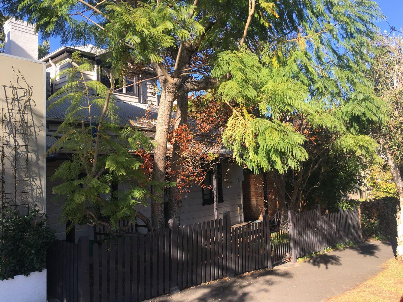 1/204 Evans, Rozelle NSW 2039, Image 1