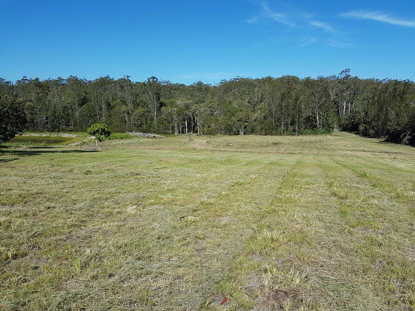 Gorman Lane, East Kempsey NSW 2440, Image 0