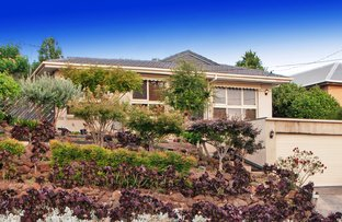 Picture of 16 Edward Road, Chirnside Park VIC 3116