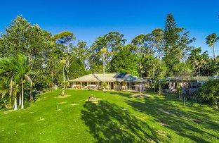 Picture of 100 Myocum Downs Drive, Myocum NSW 2481