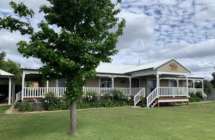 Picture of 312 MORRELL ROAD, Fairbridge WA 6208
