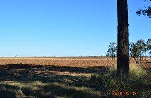 Picture of Wooroolin QLD 4608
