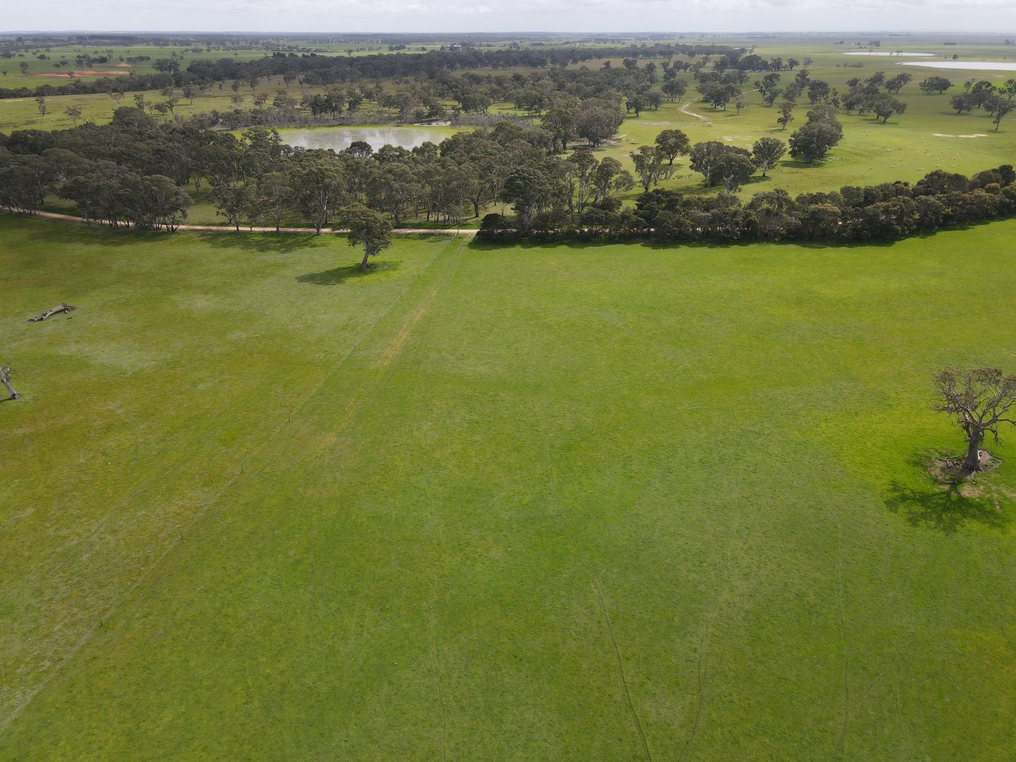 Lot 35 Limberts Road, Bool Lagoon SA 5271, Image 2
