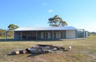 Picture of 1596 Oallen Ford Rd, Oallen NSW 2622