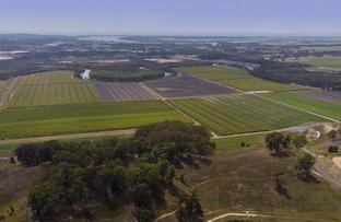 Picture of Uralba NSW 2477