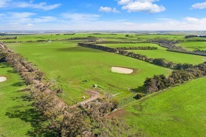 Picture of Curdievale-Pt Campbell Road, HEYTESBURY LOWER VIC 3268