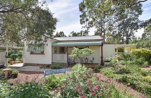 Picture of 19 Knox Street, Abernethy NSW 2325