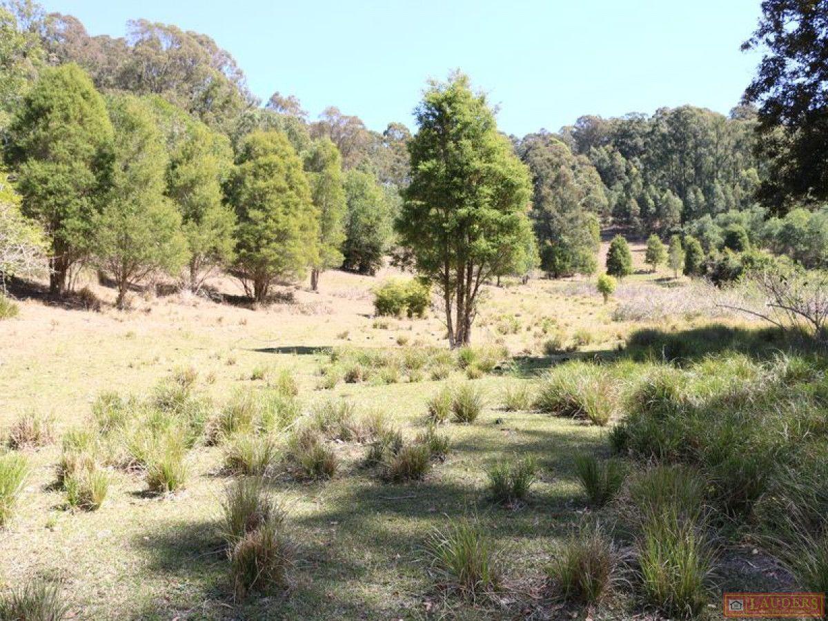 Lot 1 DP 33543 Off Middlebrook Road, Marlee NSW 2429, Image 2