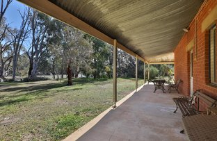 Picture of 241A Lock 8 Road, Wentworth NSW 2648