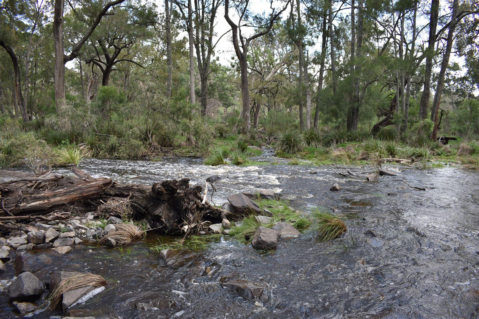 1634 Bruxner Way, Tenterfield NSW 2372, Image 2