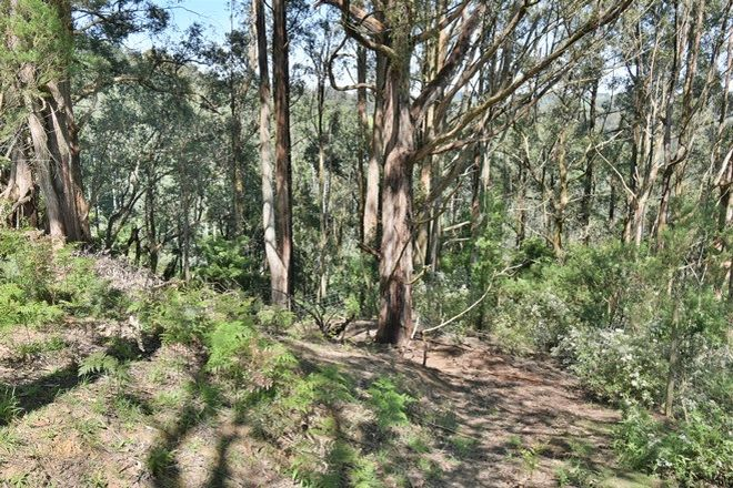 Picture of 375 Mccartins Road, TURTONS CREEK VIC 3960