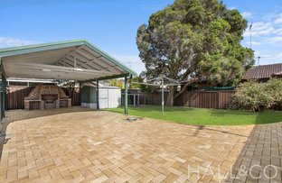 Picture of 45 Colonial Drive, Bligh Park NSW 2756